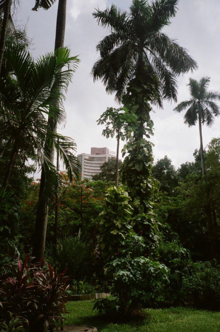 Stephanie Pfaender Mumbai Photo Nr.5 for Tatler Uk